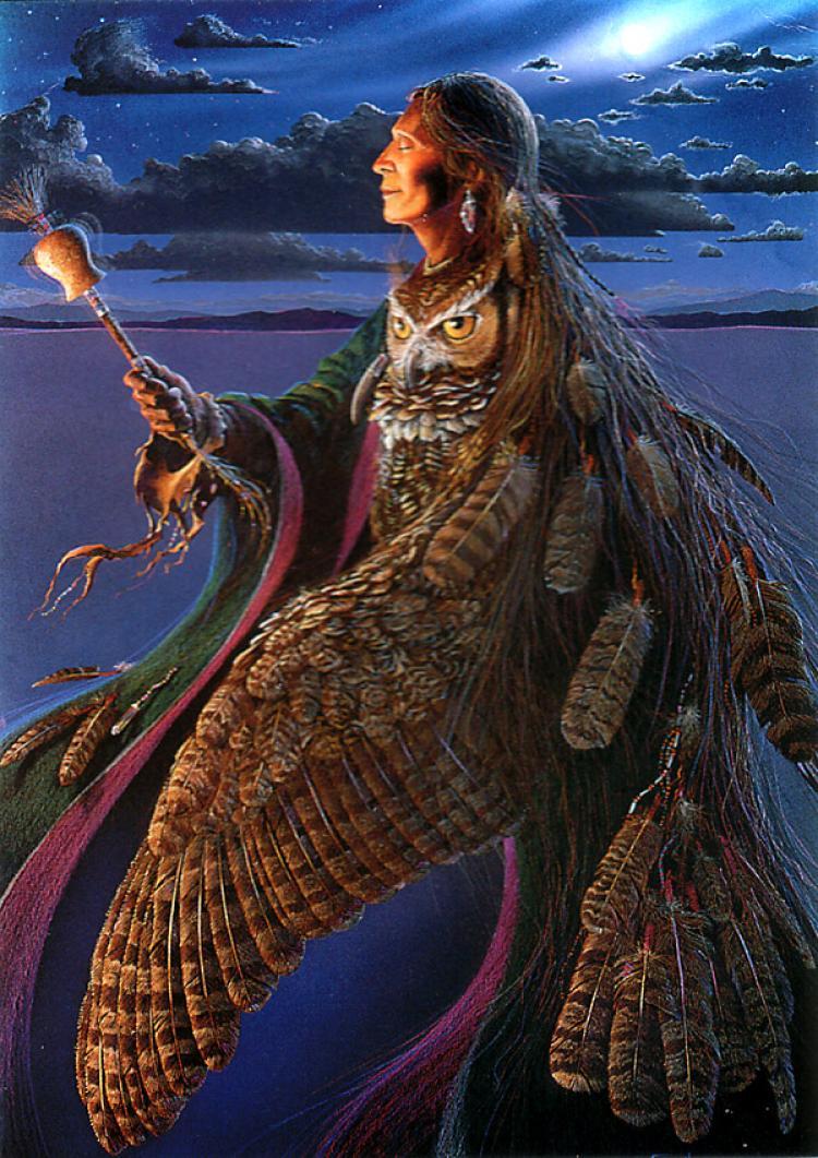 Магическая шаманская программа 69501