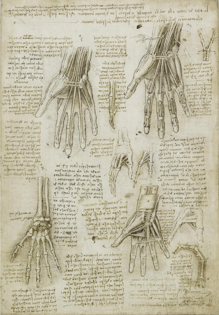 Своими руками леонардо